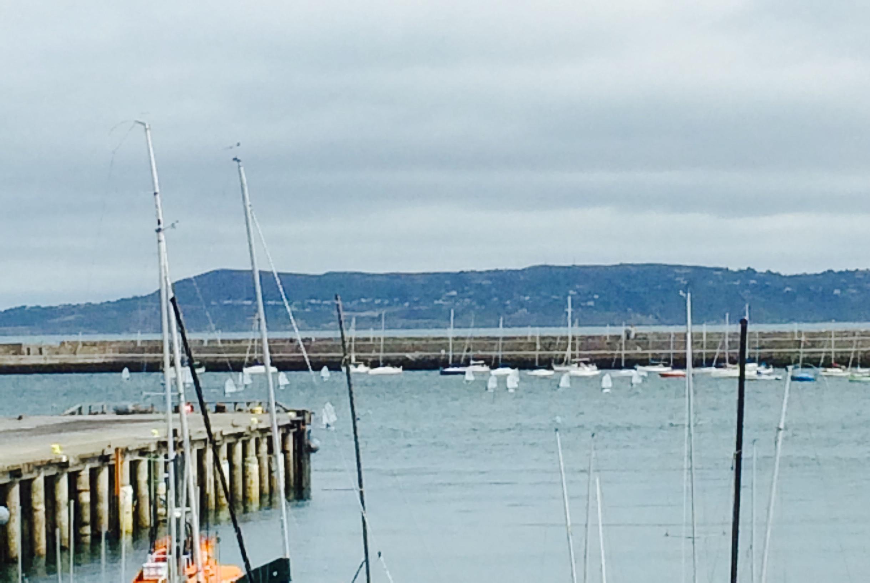 DL port1
